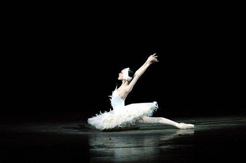 Maya Plisetskaya – Dying Swan (1959) | BALLET20.COM